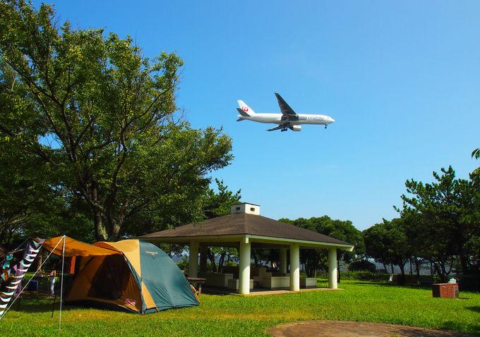 飛行機を眺めながらキャンプを楽しむ