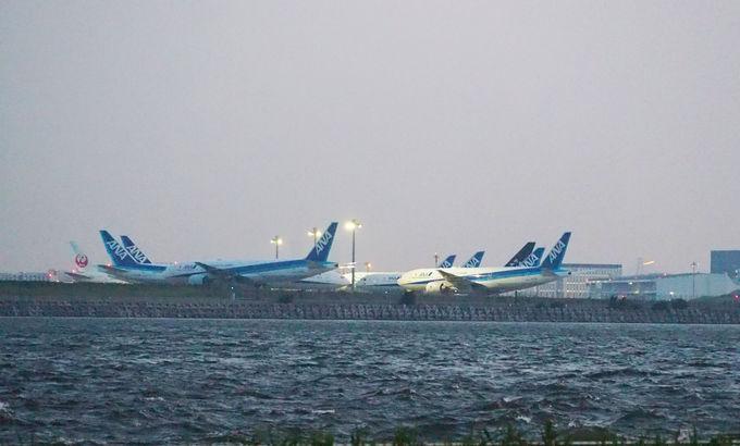 羽田空港や東京タワーやレインボーブリッジ、スカイツリーの風景を一望
