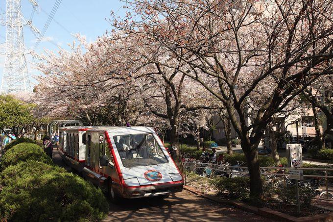 公園内を可愛らしいシャトルバスが疾走!