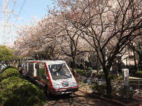知られざる桜&BBQの名所!東京「総合レクリエーション公園」は緑溢れる住宅街の別天地