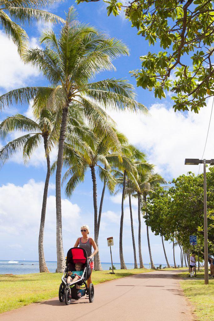 ハワイの日差しと南国の木々がお出迎え