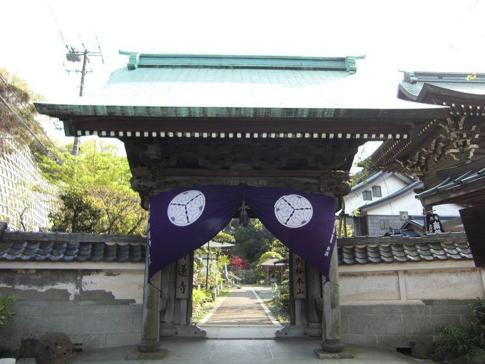 大師と人々を結ぶ「鎖大師」。青蓮寺