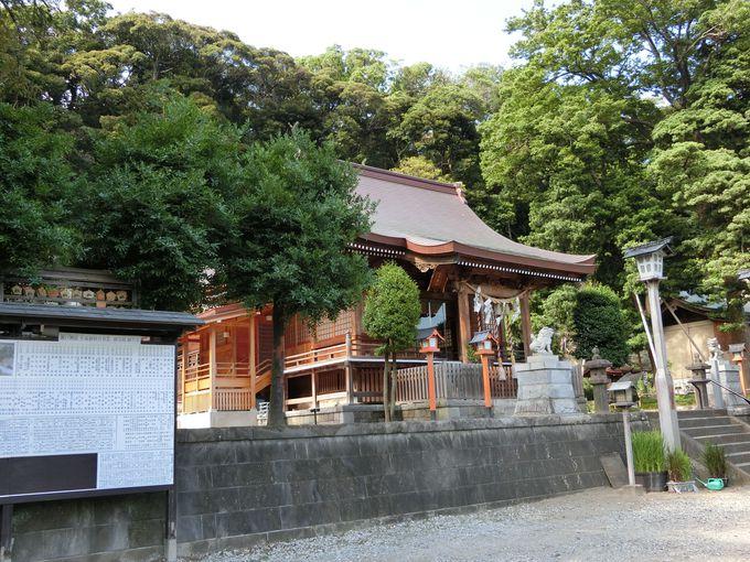 樹齢720年とも伝えられるカヤの古木は区内最古!瀬戸神社