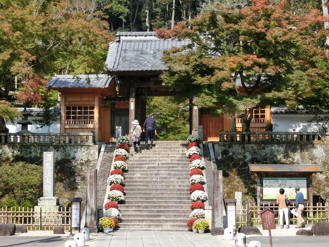 修善寺温泉と修禅寺。政争の末に人々が込めた仏への想い