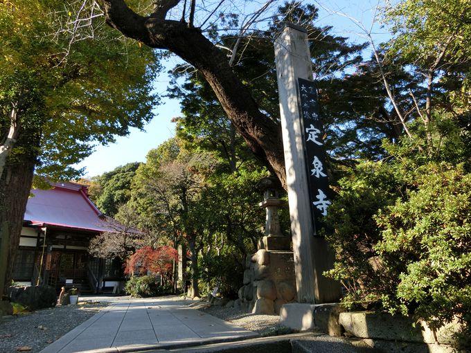 鎌倉の風情を残す境内。巨木に囲まれた中で往時を偲ぶ。