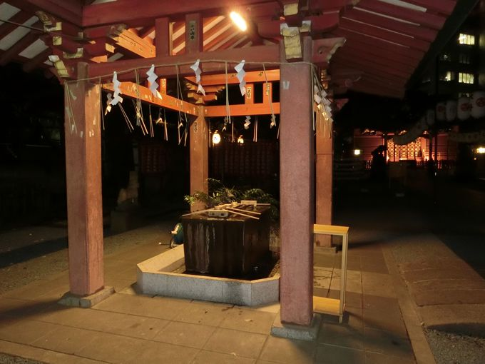 夜は開放感がさらにアップ!金王桜を観るなら日中がお薦め!