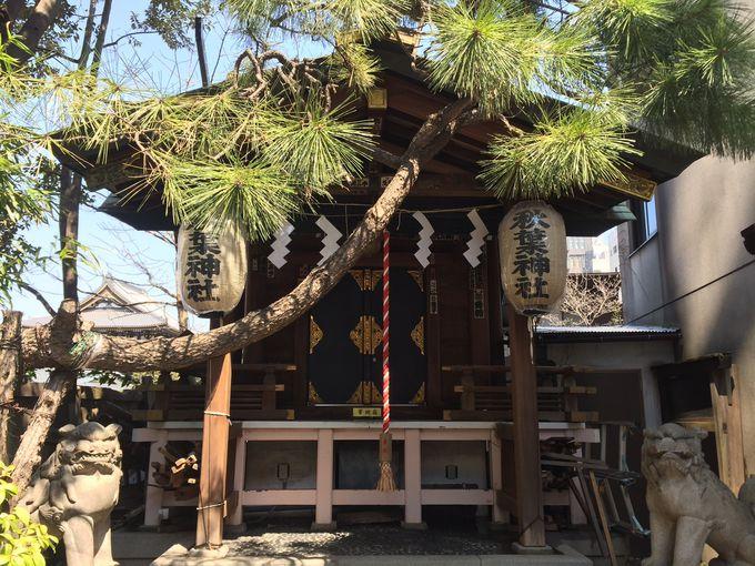 金の装飾など意外と豪華。街にひっそりと佇む「秋葉神社」