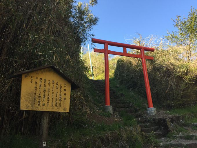 平安時代から続く歴史。かつては石でなく「竹」が敷き詰められていた!