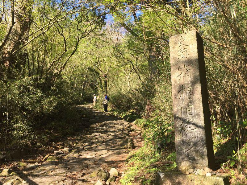「旧箱根街道」は今も難所?幾多の旅人が踏みしめた石畳を歩こう