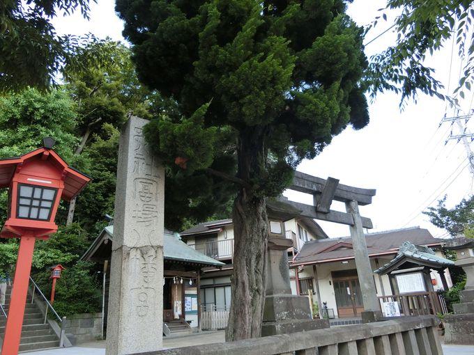 2.冨塚八幡宮