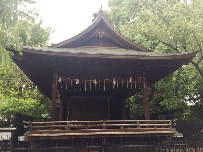 簡素な造りに江戸の美的感覚を垣間見る。社殿と対照的な建築物の数々