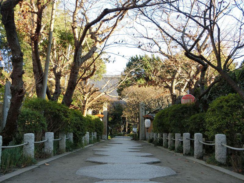 萩の名所としても有名!北条氏邸宅跡地に建立された訳とは?