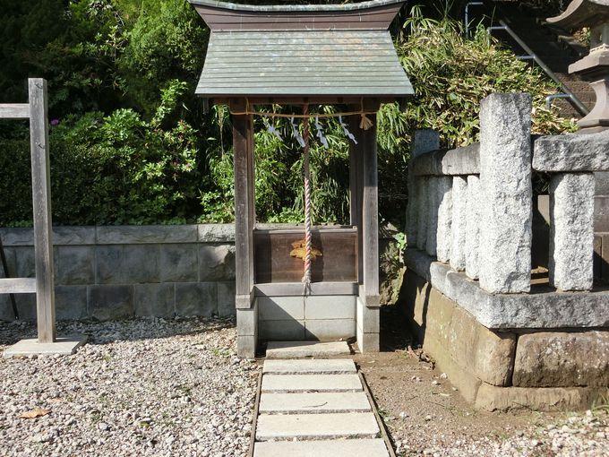 住民に寄り添う氏神様。本殿に行けずとも参拝可能な優しい神社