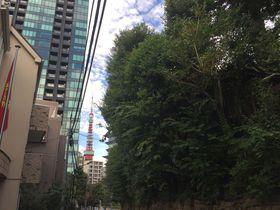 徳川家と諸大名に愛された東京「三田」!悠久の歴史を紡ぐ神社3選