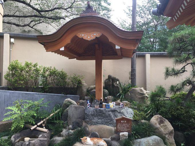 将軍生母も感銘を受けた「お竹堂」が伝える御仏の教えとは?