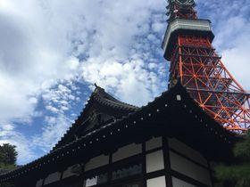東京タワーとのコントラストが映える・芝「心光教院」の優美