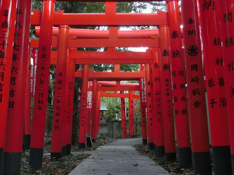 鳥居の回廊だけじゃない!旨いと評判の湘南「鵠沼伏見稲荷神社」の湧き水とは?