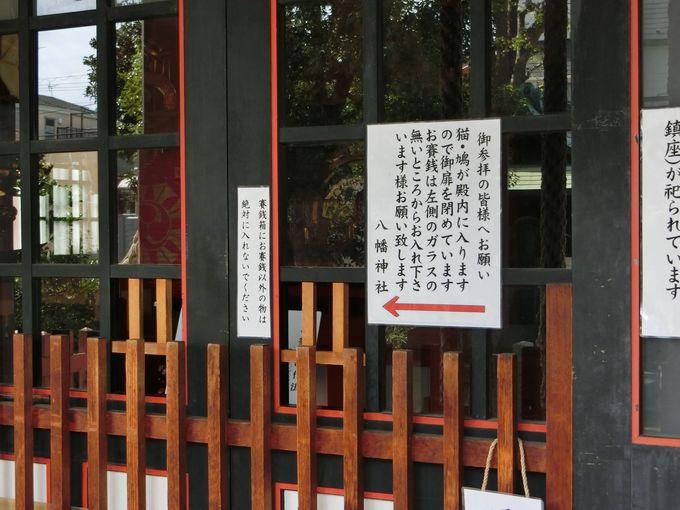 5社が密集する神社の複合施設!迷ったら本殿前に集合せよ?