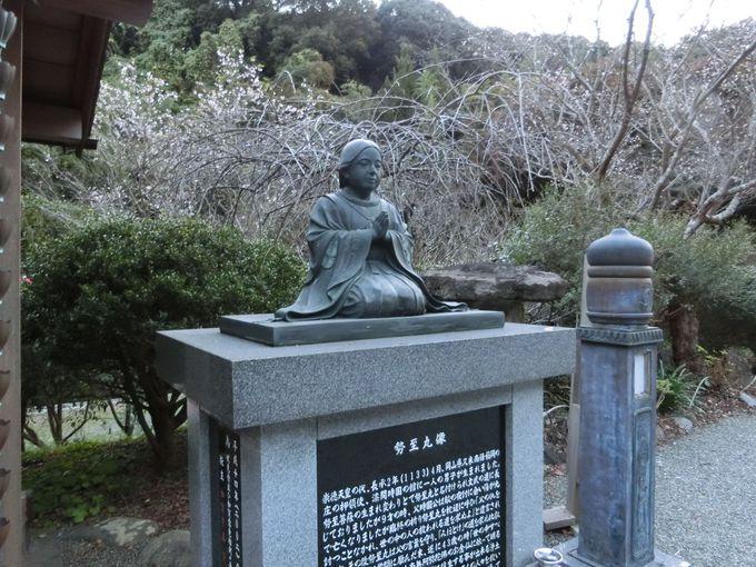 陰陽の滝へ辿り着くまでに見ておきたい「称名寺」の史跡
