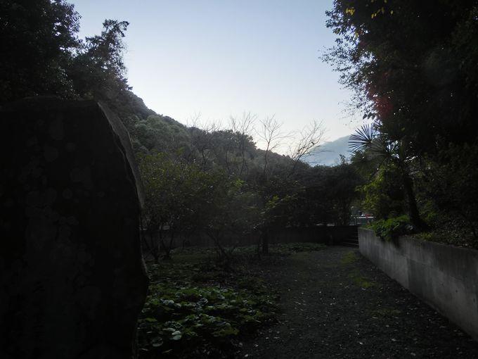 自然の雄大さから歴史を知る!「鎌倉」が持つ観光の多面性