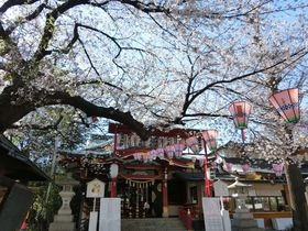 参拝するたびに心躍る!四季の風情を尊ぶ東京・大崎「居木神社」