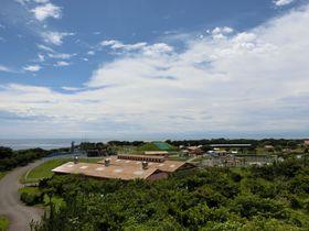 自然の恵みを体験!横須賀「長井海の手公園・ソレイユの丘」で心もほっこり!