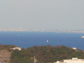 横須賀「塚山公園」で歴史散策!里山で野鳥や草花の鑑賞も