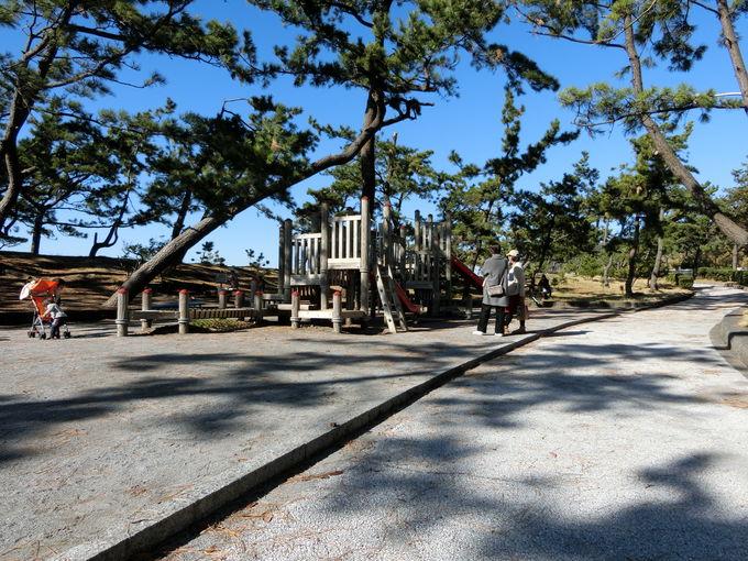 老若男女が「遊べる」由緒ある公園