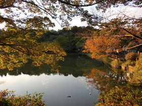 異文化交流も盛ん!自然と文化に育まれた横浜「三ツ池公園」