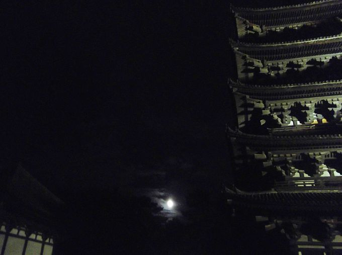 まずは、興福寺の境内へ 夜の五重塔は違う!