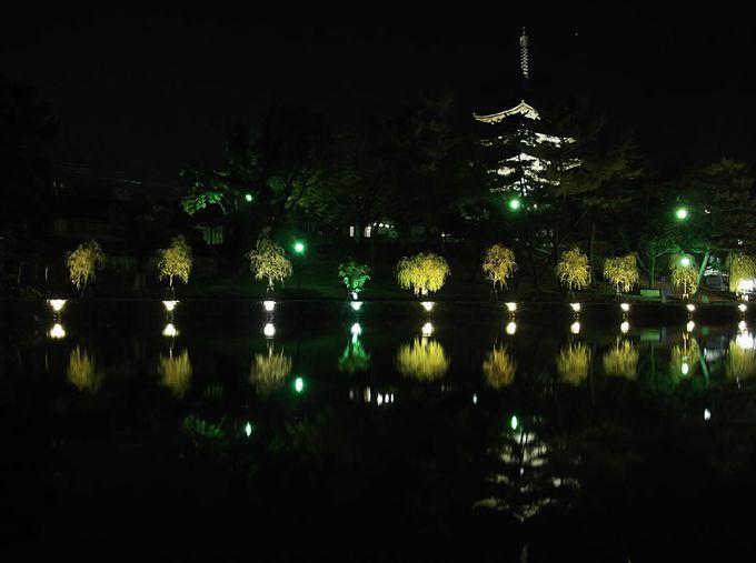 最後に、猿沢池へ 街の明かりが眩しい!