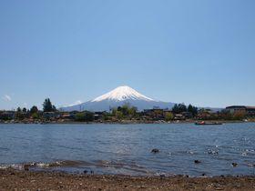 世界遺産登録目前!!富士山の湧水で仕込む、河口湖の地酒