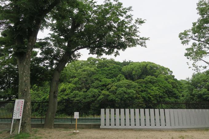 世界文化遺産「反正天皇陵古墳」