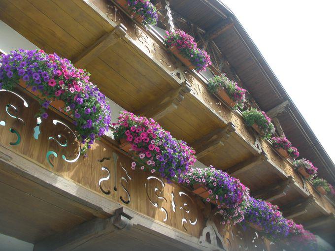 お花が溢れるバルコニーや窓辺に心和むひとときを!