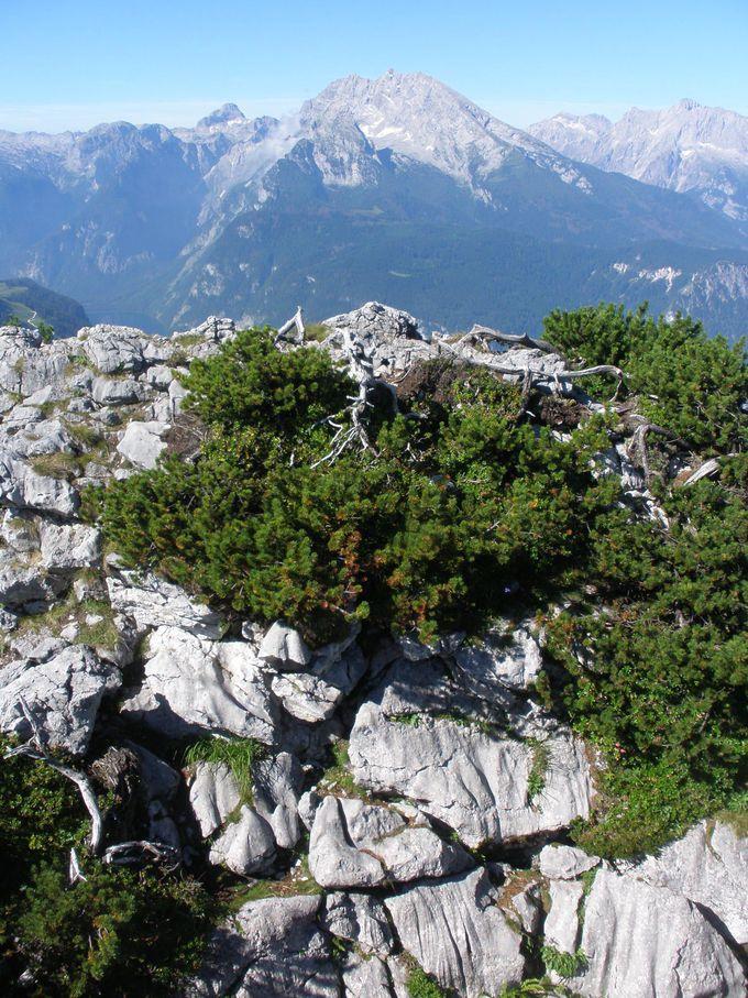 イーグルネストからヴァッツマン山群を見渡しながら岩山の奥へ