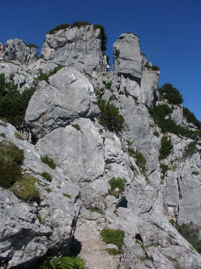 トレッキングコースからは絶景のドイツとオーストリアの平原!