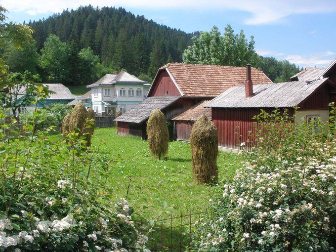 長閑な田園風景と伝統的な家屋が続く中ヴォロネツ修道院へ