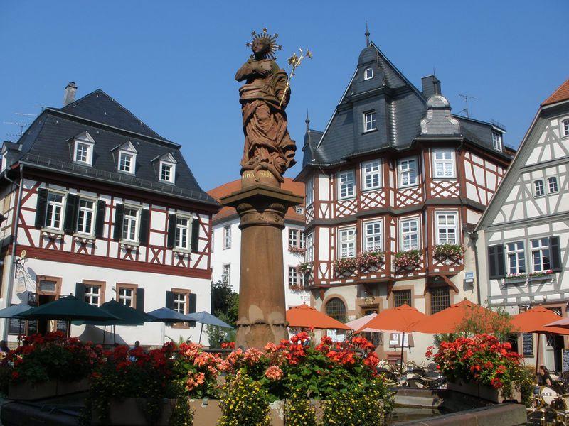 葡萄畑の麓に広がるドイツ・ヘッペンハイム!木組み建築の贅沢な眺め
