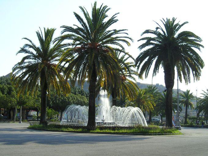 市民公園は緑いっぱい!