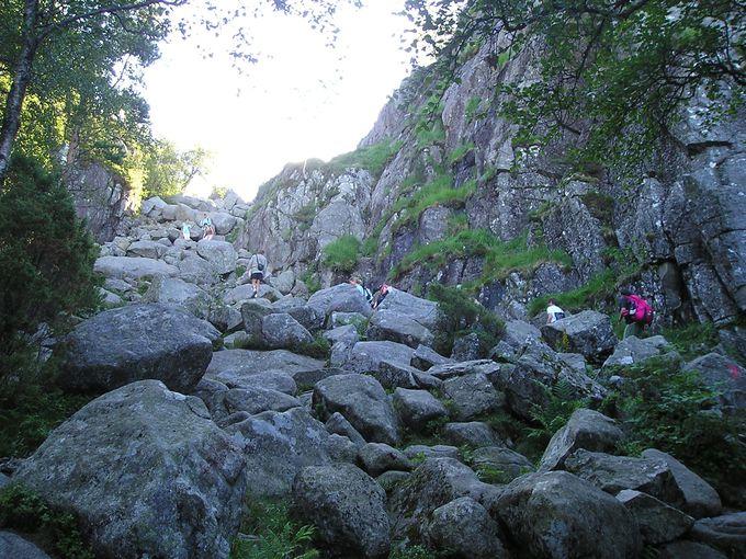 約2時間のハイキングは変化のあるワクワクコース!
