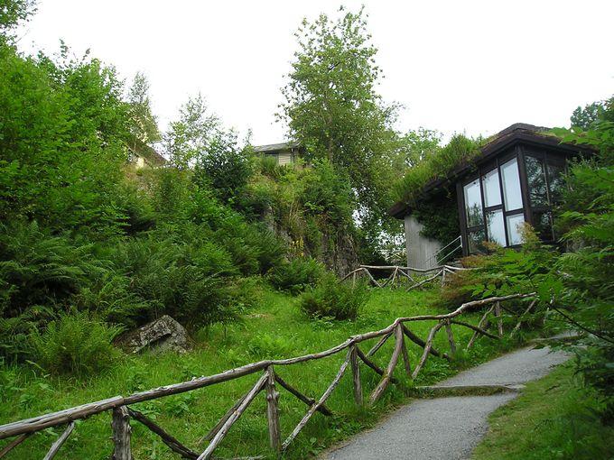 緑溢れる広くて高低差のある庭園