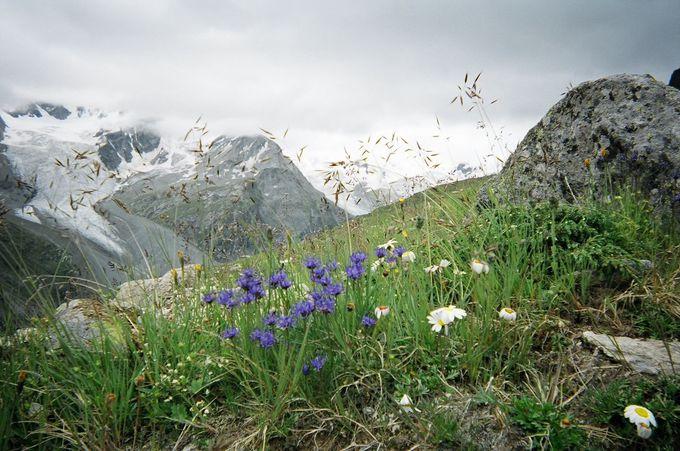 展望台コルヴァッチからロゼック谷へのハイキング