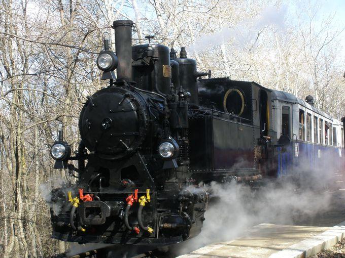 さらに子ども達が運営する登山列車「子ども鉄道」へ