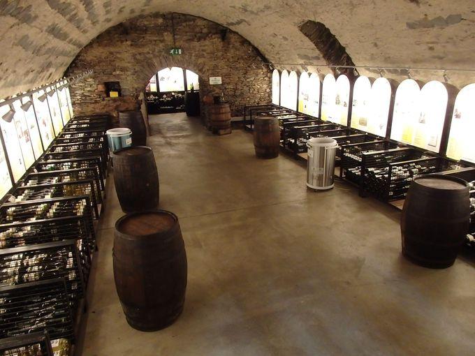 ワイン博物館とワインセラー