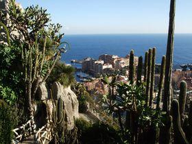 地中海の絶景を一望!モナコの熱帯植物園&鍾乳洞