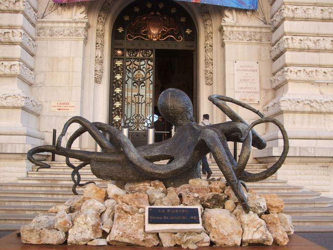 海沿いの海洋博物館&水族館