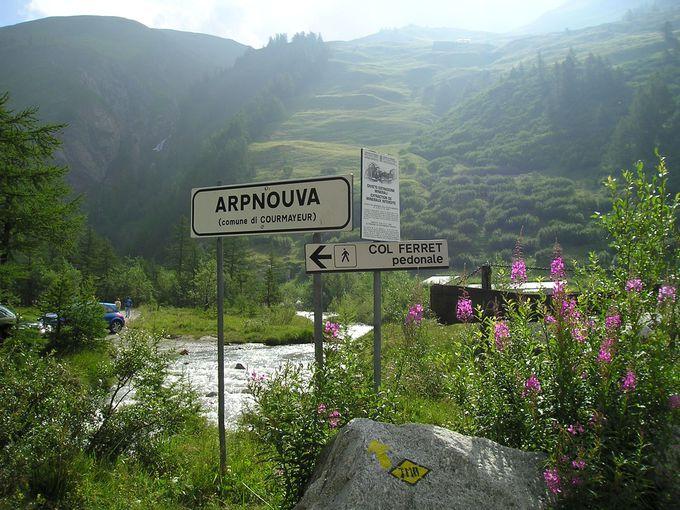 アルプヌーヴァ