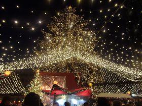 ドイツ世界遺産の町「ケルン」で楽しむクリスマスマーケット