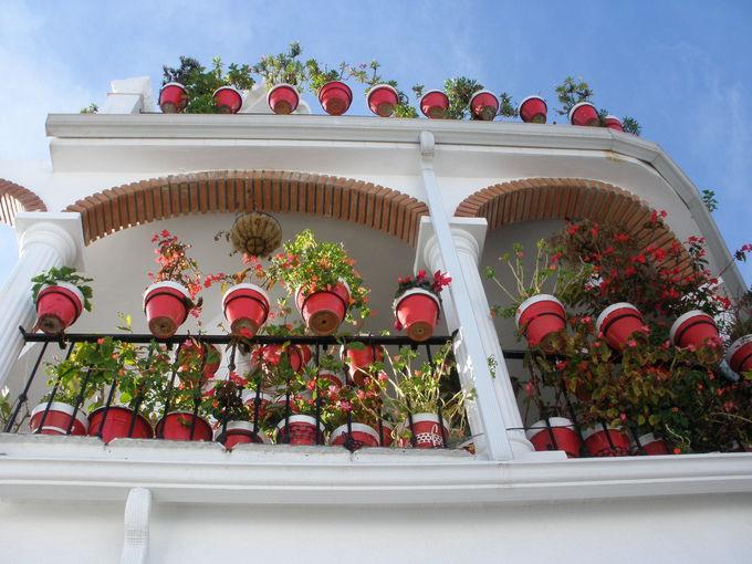 白壁に映えるセンス良い飾り付けの家並み