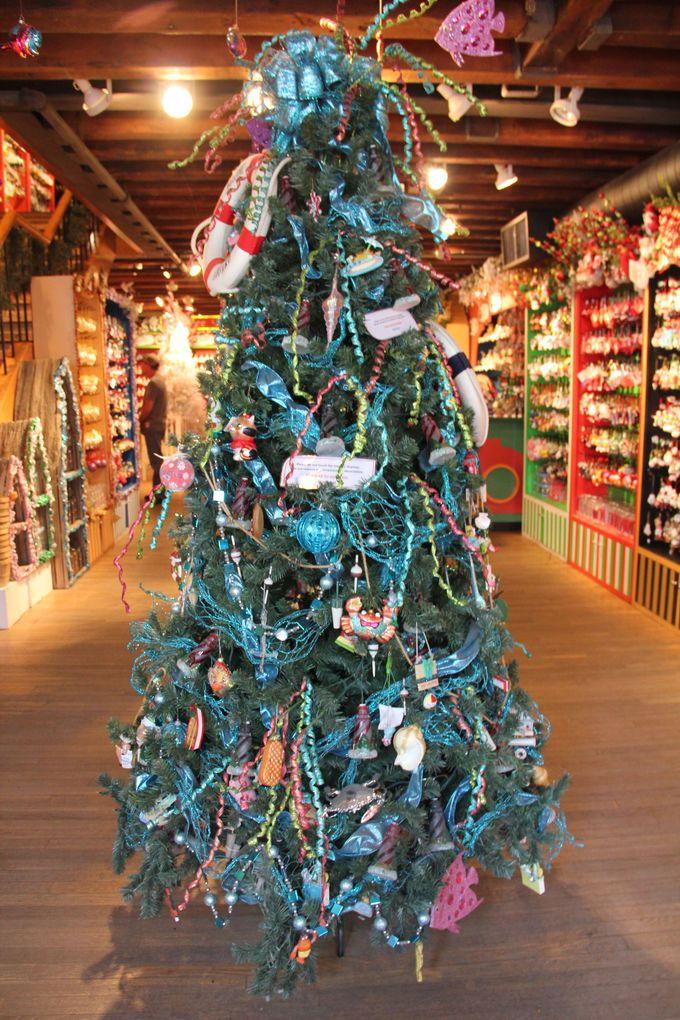 入るとすぐに飾ってある大きなツリーに注目!